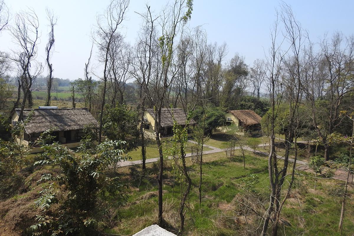 Aerial View - Lumbini Buddha Garden