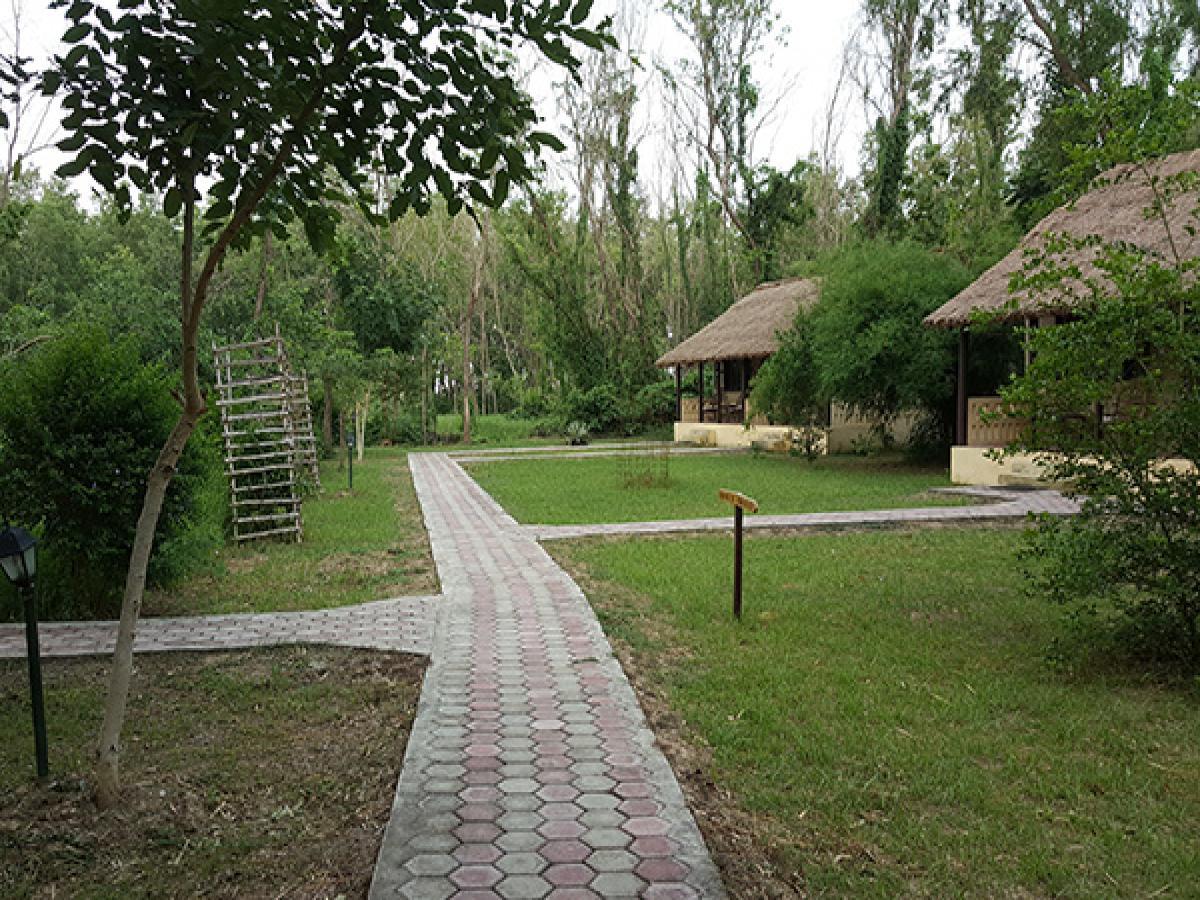 Garden View - Lumbini Buddha Garden